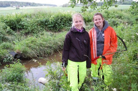 JENTENE MED LJÅEN: Silje Romfo Heggdal (til venstre) og Mia Rønningen Ulvin har fått en sommerjobb utenom det vanlige. De skal bli kvitt kjempespringfrø langs Kråkstadelva.