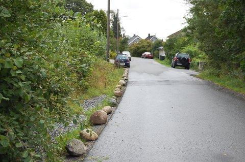 STABBESTEIN: Steinene hindrer bilistene i å parkere langs Haglundveien.