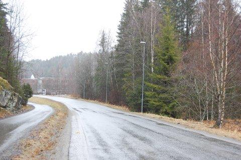 TROLLÅSEN/MASTEMYR: Lienga 4 ligger mellom bygget der Ford holder til og Quality hotell Entry på Mastemyr.