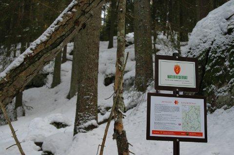 (D): Grensemerking til skogsreservat.