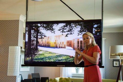 Seniorarkitekt i Snøhetta, Ingebjørg Skaare, mener at hun ble møtt med grunnleggende skepsis, intern småkrangling og til dels umotivert kritikk da hun presenterte Alfa eiendoms planer for Bøkestredet for politikerne.
