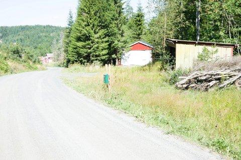 Her ved Reppesgårdveien på Mørk i Hedrum ble Kristin Juel Johannessen (12) tatt livet av den 5. august 1999. Nå kan saken endelig gå mot en slutt når Høyesterett onsdag behandler den drapsdømte mannens anke over saksbehandlingsfeil ved drapsdommen. Arkivfoto