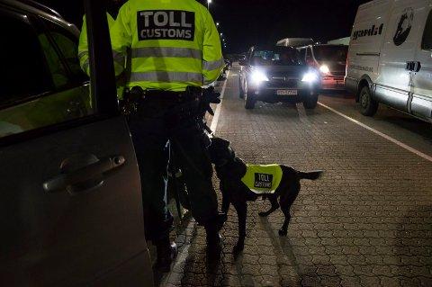Lukter gjemte sedler: Valutahunden Monty lukter seg stadig fram til nye forsøk på valutasmugling på ferjeavgangene i Larvik og Sandefjord, og på Torp. Arkivfoto