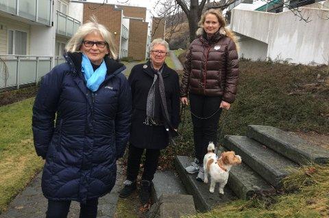 TRAFIKKSKADE: Adelheid Bøen (t.v.), Torhild Lillian Sørensen og Elisabet Bøen-Johnsen har alle opplevd hvordan trafikkulykker kan endre livet.