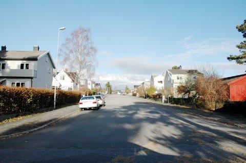 Parkalleen, Larvik