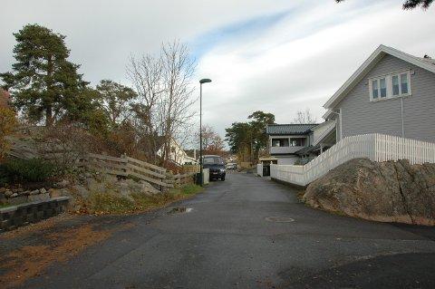 Strandveien på Steinsnes, Østre Halsen