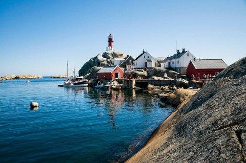 JIPPI! Det har vært blåskjellmangel de siste årene. Men nå har Larvik dykkerklubb funnet indikasjoner på at situasjonen kan bedre seg.