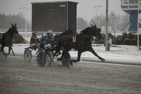 FORNØYD: Frode Hamre sammen med  hest Gogo Hall da det fortsatt gikk løp i Norge.