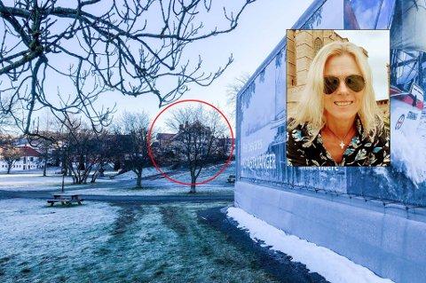 MISTET UTSIKT: Bente Kronen bor i Kirkestredet 7 (rød ring). Siden i fjor høst har det store plastteltet ligget «midt i glaningen» hennes.