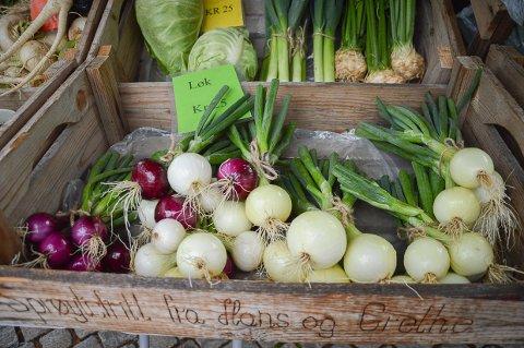 KORTREIST: Bjørn Bergene kommer med ferske grønnsaker fra Kvelde til Løkesletta på Langestrand lørdag formiddag.