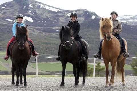 PÅ HESTERYGGEN: Dina Herkind, fra venstre, Maren Sæterhaug og Edvard Fodstad DackeAlle foto: Privat