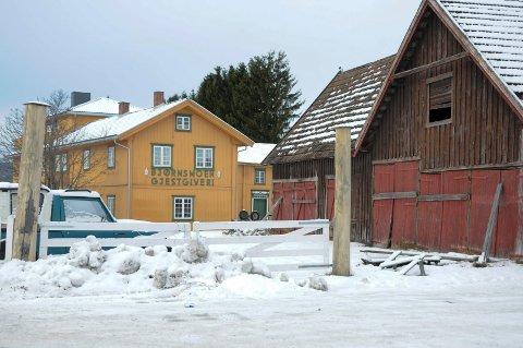 BEHANDLES POLITISK: Formannskapet skal behandle dispensasjonssøknaden fra Skarpsno Tynset AS om å fradele 6 dekar på Bjørsnmoe til et næringsbygg på cirka 1.500 kvadratmeter neste torsdag.