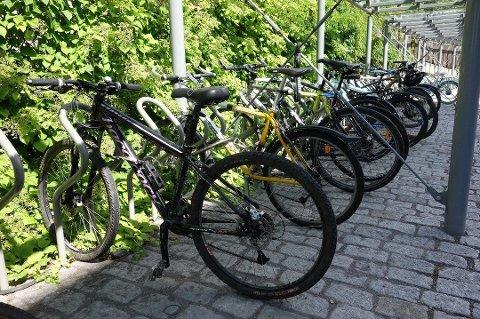 NORDMENN BEVEGER SEG FOR LITE: Ved å bytte ut privatbilen med sykkel på turer under fem kilometer, vil de fleste enkelt nå målsettingen om minst 30 minutters fysisk aktivitet hver dag, skriver Bikeplay.no på egne nettsider. Grunnleggeren mener Teie torv enkelt kan omgjøres til en attraktiv sykkelbase.