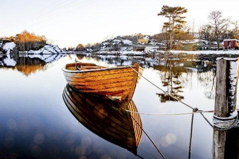 Vinter på Øra: Ett av flere naturbilder du kan finne i Tjømekalender´n for 2020. Foto: Jon Petter Marthinsen (Tjøme fotoklubb)