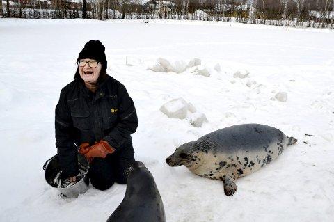 Foringstid: Selene Totta og Sill-Ja får sild hos dyrepasser Maibritt Lundquist. – Totta er dyktig og smidig som et kjøleskap, ler dyrepasseren. foto: beate Nygård