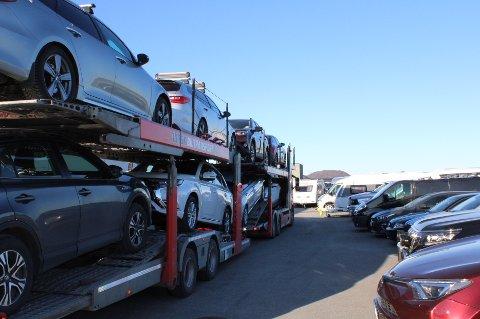 Flere trailerlass med biler ankom i helgen Stadssalg.