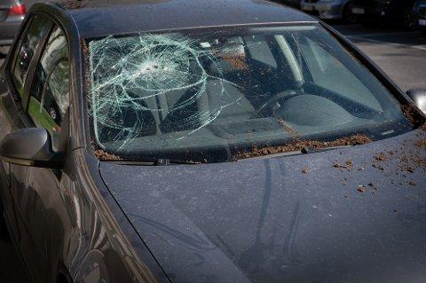 En bil som sto i nærheten fikk en blomsterpotte i frontruta i forbindelse med at et kjærestepar kranglet i Mosjøen.