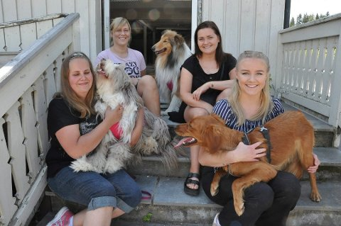 NETTKURS: Unni Halden (36) (f.v.), Carina Josefine Iversen (35), Mona Paulsen (24) og Karen Bakke (20) driver Askelabben hundesenter i Næroset. Iversen forteller at de starter nettkurs for å hjelpe hundeeiere i den vanskelige perioden med sykdommen som herjer. Bildet er tatt i en annen anledning.