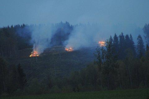 TRE STEDER: 110-sentralen fikk flere henvendelser om brannene på Nes mandag kveld.