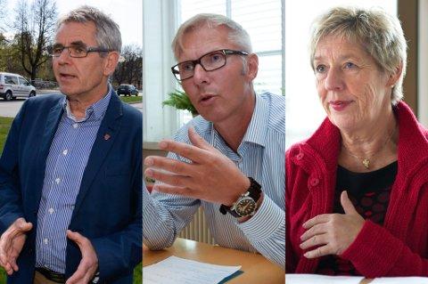 Magnar Ågotnes i Ringerike kommune, Ståle Tangestuen i Hole kommune og May-Britt Nordli i Jevnaker kommune.
