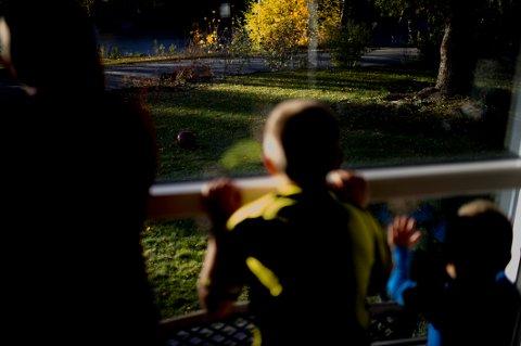 BARE SØSKEN: Hole kommune anbefaler at barn er mest mulig hjemme, og bare leker med søsken.