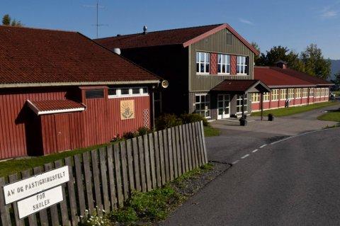 Det er ikke flertall for å flytte Røyse-elever til Vik skole.