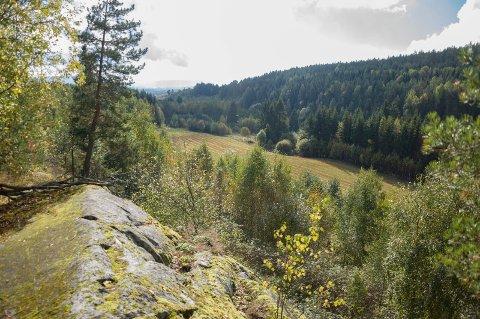 Dette er området hvor Vestsiden massedeponi er planlagt. Etter planene skal dalsøkket fylles igjen, og åker etableres på toppen av fyllingene.