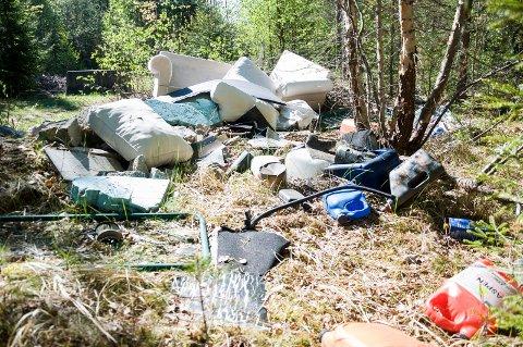 Store mengder søppel er dumpet på Begnamoen.