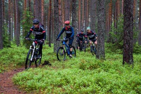 Thomas Hannestad, Torjus Winther, Arne Aamodt og Glenn Salterød i spissen for stisyklistene fra Krokskogen CK.