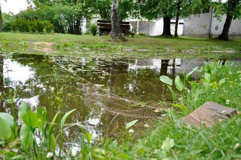 Det ble lagt ut et garn for å fange gjedda i Søndre Park. I natt ble det stjålet.