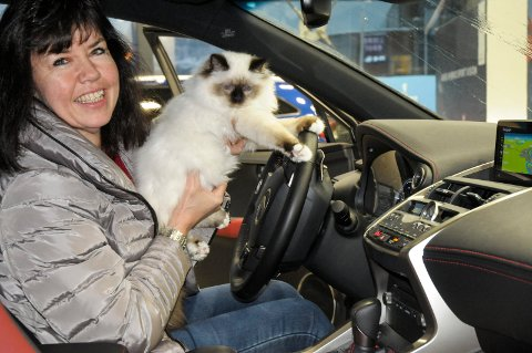 LEXUS PRØVER LEXUS: Aud Elise Iversen og katten Lexus-Armani likte seg godt inne i en Lexus.