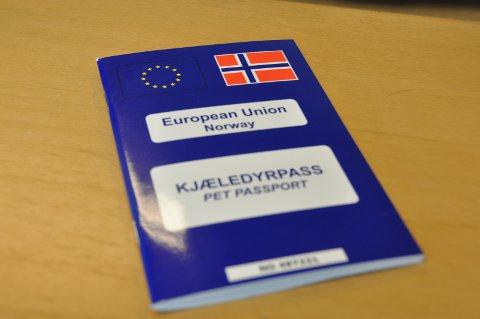 PASS: Skal hunden utenlands, må den ha pass og være chippet.
