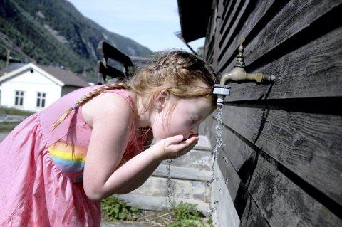 KJØLE SEG NED: Linnea Nesheim fra Øverland barnehage måtte kjøle seg ned i springen på Tinn museum torsdag.