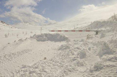 KREVENDE: - Vi må se på alle mulige løsninger for å få til vinteråpen vei fra Bitringsnatten til Svineroi, mener Bengt Halvard Odden.