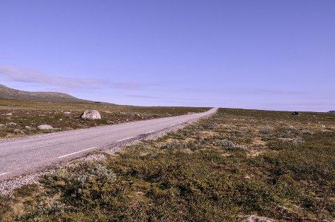 Stridstema: Vinteråpning over Imingfjell  er fortsatt det springende punktet når Hardangerviddaplanen rulleres. Stryingsgruppa sender tre forslag til høring.