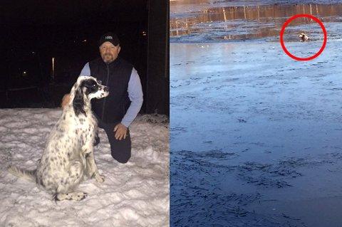 ISDRAMA: Under en luftetur gikk hunden Triton gjennom isen og havnet i elva. Hundeeier Øyvind Holm forteller om dramatiske minutter.