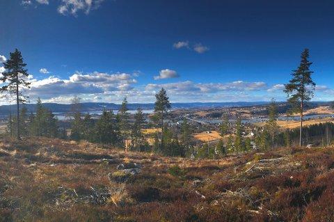 Tomteområdet har panoramautsikt over store deler av Nedre Romerike – fra Fetsund mot Glomma, Øyeren, Lillestrøm og Rælingen.
