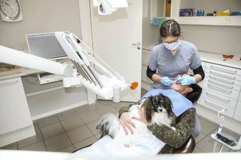 Trygg: Joppe var til god hjelp når Kate Frilseth fra Bjørkelangen var til behandling hos tannlege Siri Mette Herrem.