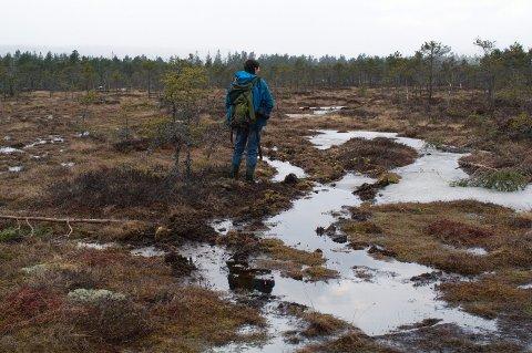 RESERVAT: Fylkesmannen ønsker å restaurere Høgsmåsan, men historielag og grunneiere er negative. Pål Martin Eid i Miljødirektoratet tror historielaget er litt dårlig informert. Foto: Arkiv