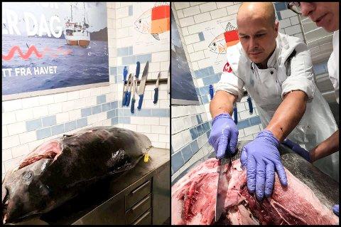181 KILO: Makrellstørjen som ankom Meny på Gystadmarka veide nesten 200 kilo. Ferskvaresjef på Meny Gystadmarka, Kim Ronny Larsen, er i full gang med å skjære i fisken. Foto: privat
