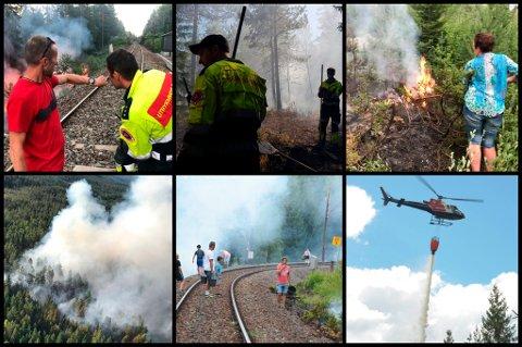 MANGE SKOGBRANNER: Den tørre sommeren 2018 bød på usedvanlig mange oppdrag for brannvesenet på Romerike. Også innbyggerne trådde til ved flere anledninger.