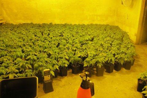 AVDEKKET: Både andre etasje og kjelleren ble brukt til cannabisdyrking. Dette bildet er fra en tidligere sak.
