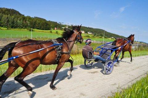 OPPBUD: Torsdag ble det åpnet konkurs i selskapet Travtrener Olav Mikkelborg AS.