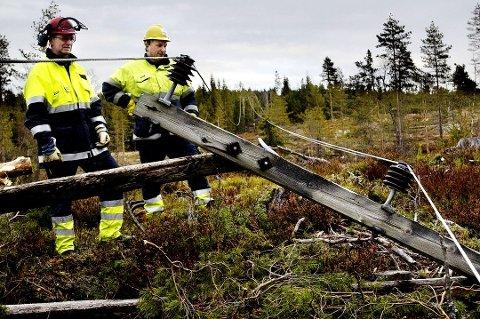 MER VIND I VENTE: Både nettselskapet Elvia og brannvesenet er forberedt på at vinden kan føre til både strømbrudd og skader på Romerike utover dagen.