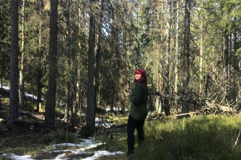 UNDERSØKELSER: Biolog Diana Eckert i Viken Skog har sett nærmere på trærne som er angrepet.