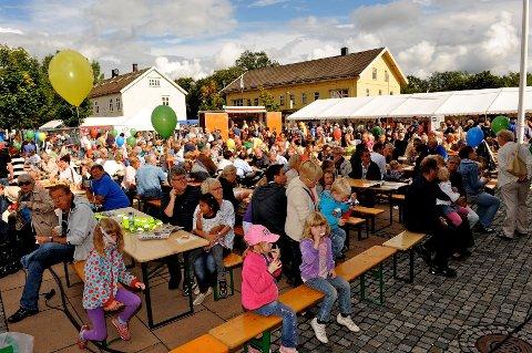 AVLYSES: Det blir ingen økofestival i Sande i 2020, men styret håper å komme sterkere tilbake neste år.