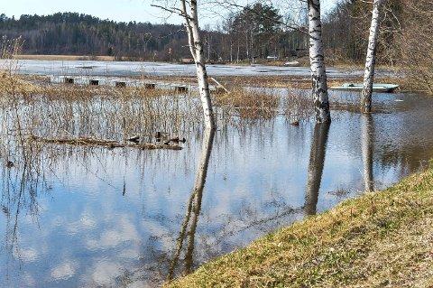 GOKSJØ: Snøen smelter og det begynner å bli mye vann i bekker, elver og innsjøer. Her i Goksjø hadde vannstanden økt med en meter eller to på torsdag, Vannet er forventet å stige ytterligere.