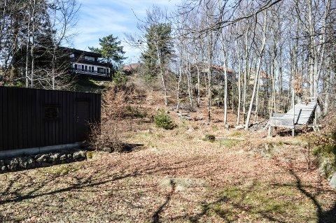FORTETTING: Noe av området i Grønåsen 6, 7 og 8 som skal fortettes med småhus. I bakgrunnen huset til én av utbyggerne.