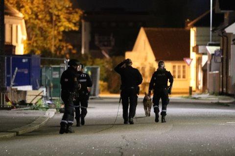 SØK: Natt til tirsdag var politiet på let etter en mann med våpen.