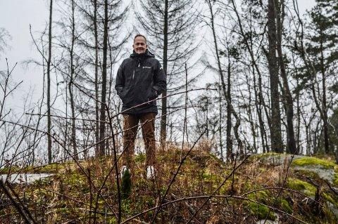 SKOG OG FJELL: Yngve Åkvåg i utbyggingsområdet på Bredholt, som grenser til fem eneboliger ved Rørkollveien og omkringliggende jorder.  På motsatt side ligger Stokke ungdomsskole og idrettsanlegget.
